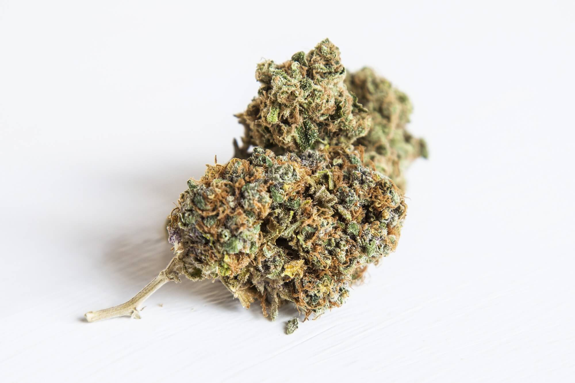 guide to alaska cannabis